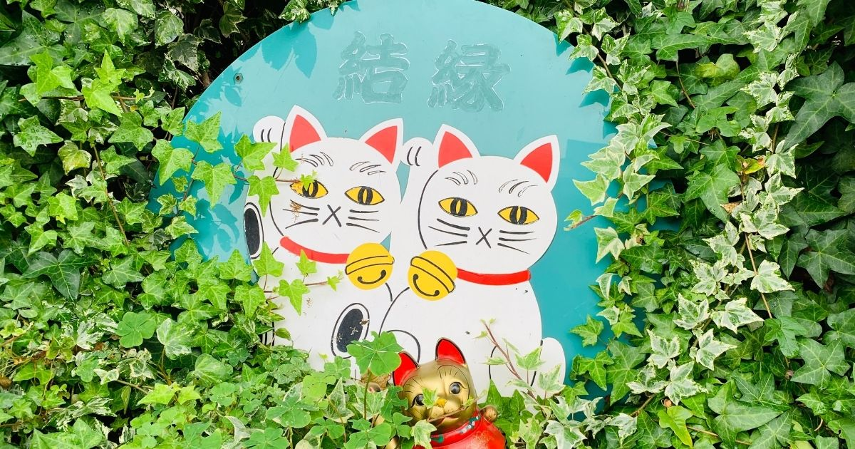 今戸神社の招き猫看板