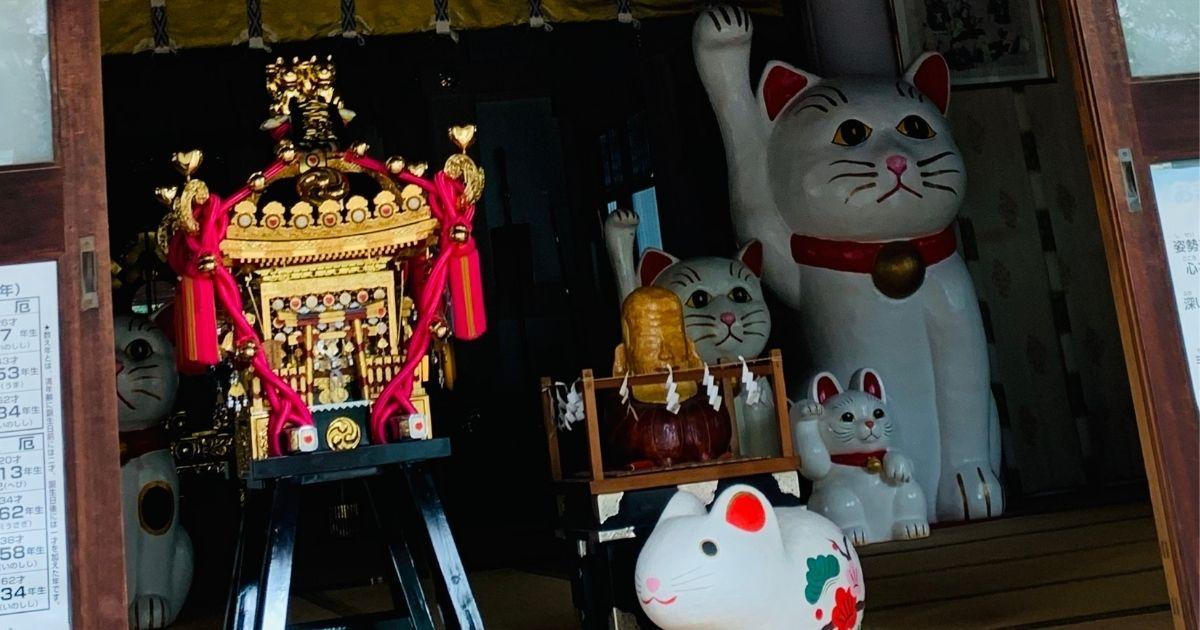 今戸神社本殿の神輿と招き猫