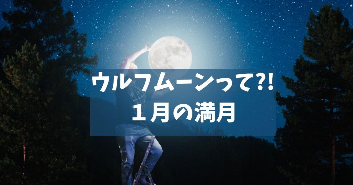 ウルフムーンって?!1月の満月
