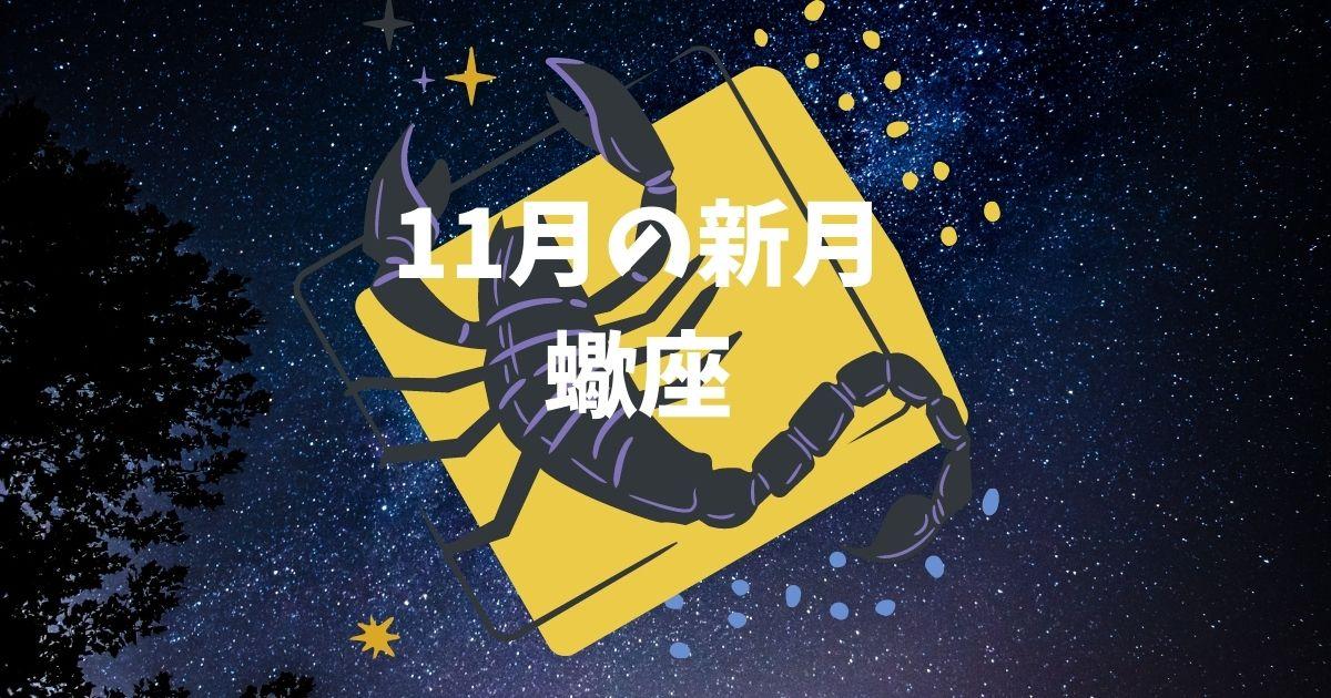 11月・蠍座の新月カレンダー!!願い事や特徴は?!ボイドタイムはいつ?!